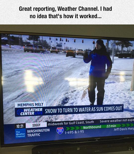 Great Reporting