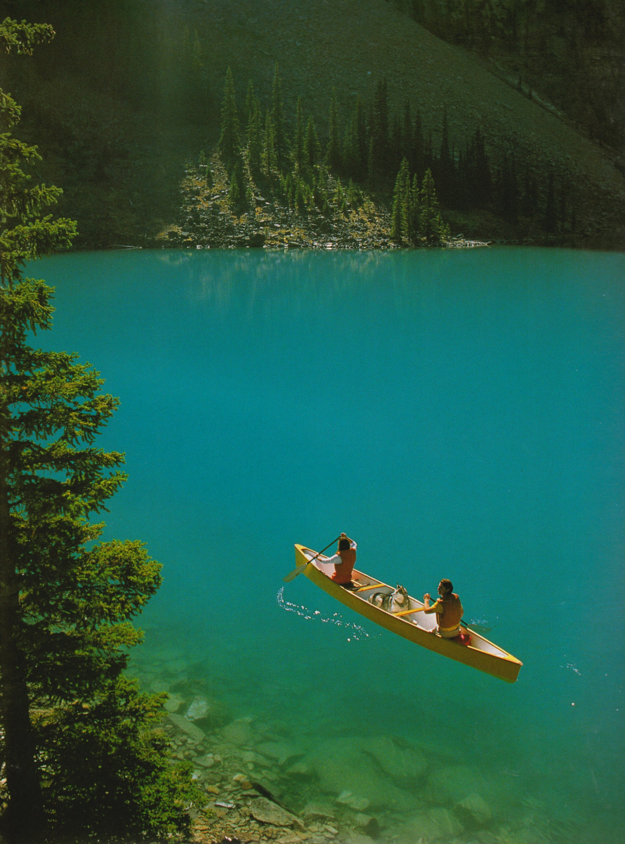 The Canadian Rockies, 1993