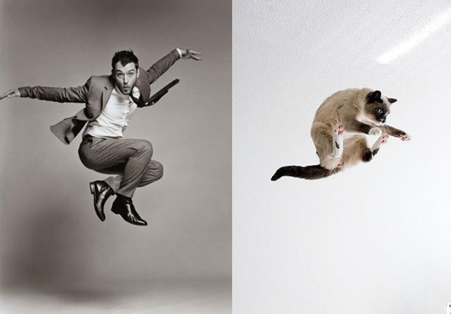 cats_male_models_2