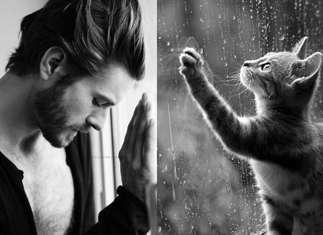 cats_male_models_26