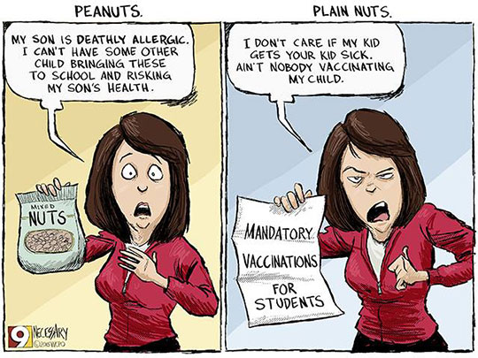 Peanuts Vs Plain Nuts