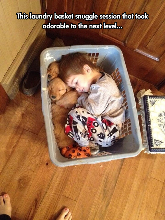 cute-kid-puppy-laundry-basket