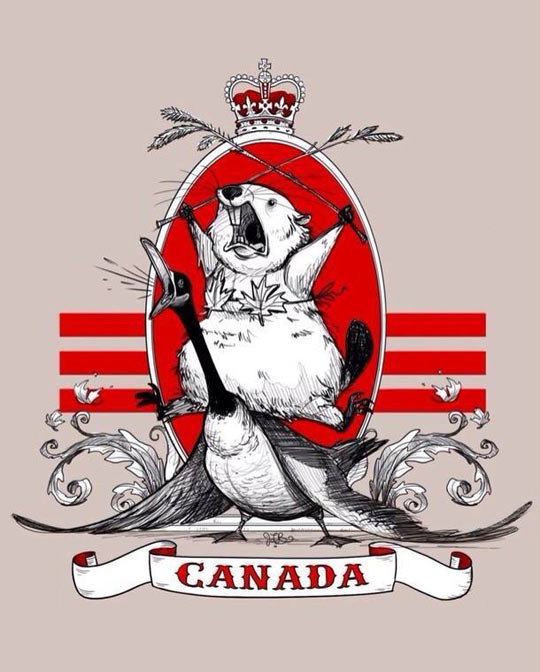 funny-Canada-beaver-duck-flag-crown