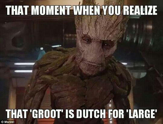 funny-Groot-Dutch-large-translation