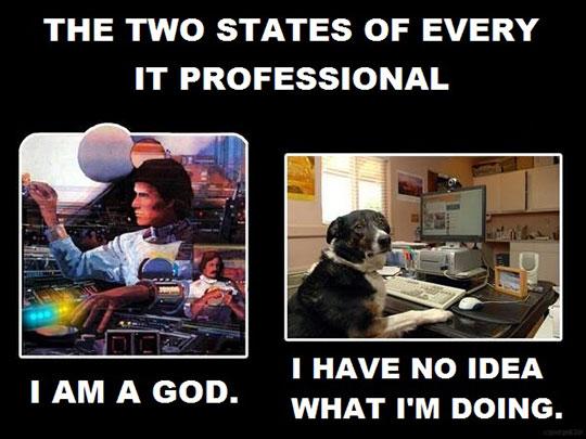 funny-IT-professional-dog-God