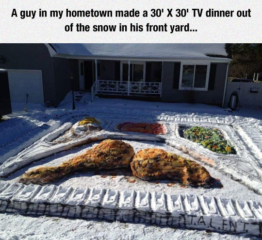 funny-TV-dinner-snow-winter-front-yard