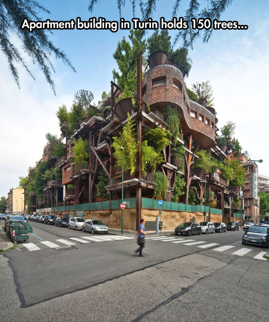 Green Friendly Building