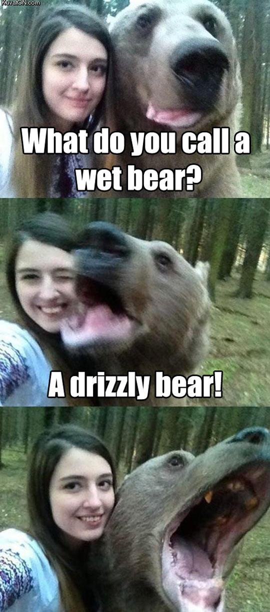 funny-bear-call-pun-humor-girl