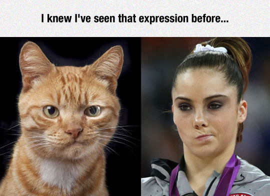 funny-cat-Olympic-athlete-mouth-gesture