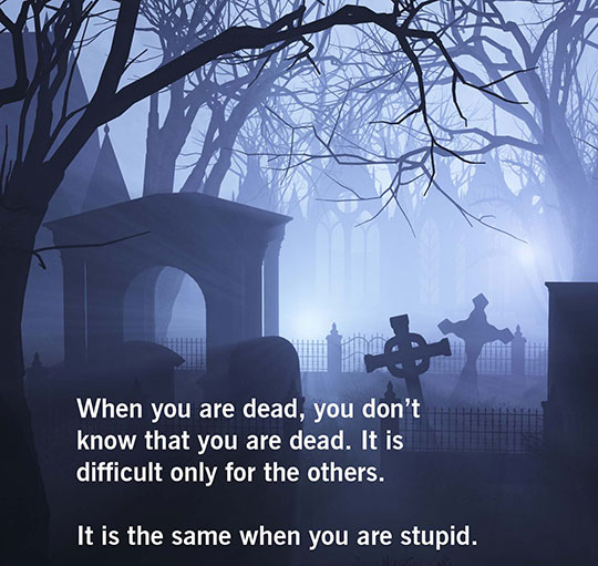 Sometimes I Fear Stupidity More Than Death