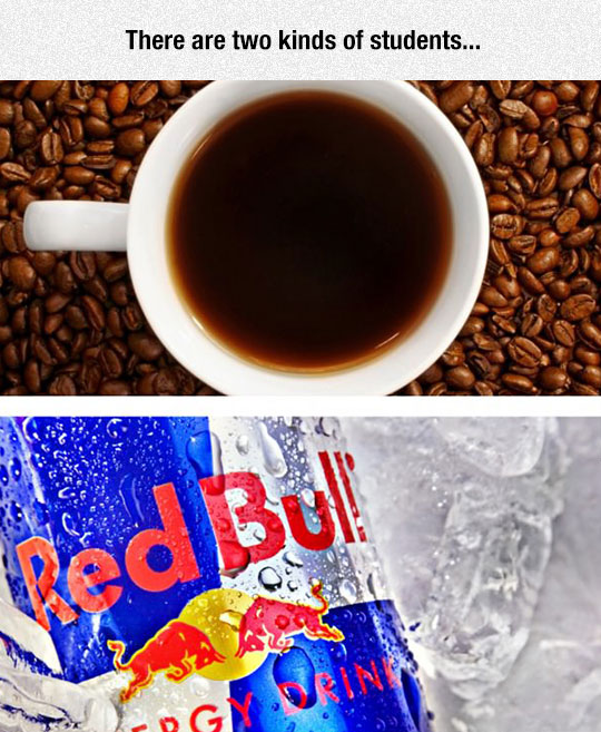funny-coffee-RedBull-cup-students