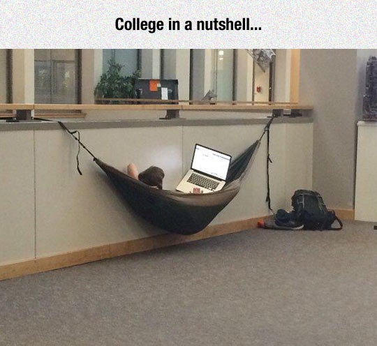 Just Another Day At College