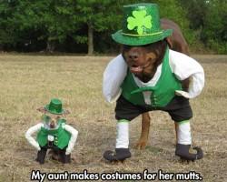 The Cutest Saint Patrick