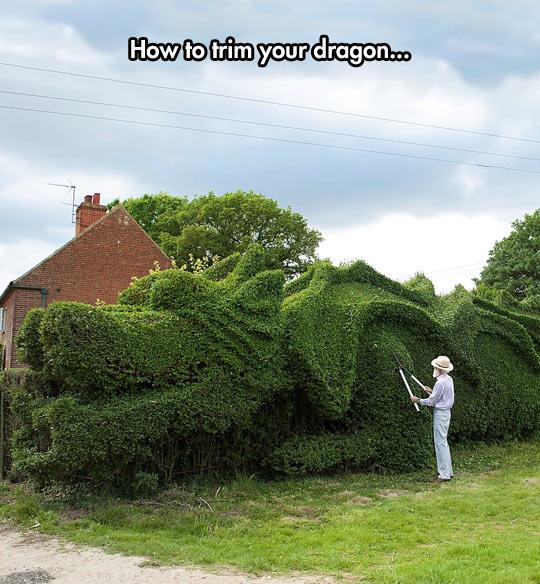 funny-dragon-garden-trim-old-man