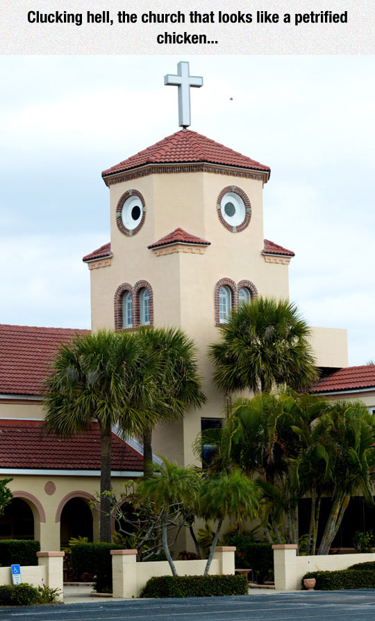 funny-petrified-chicken-church-face-confusing