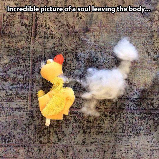 Proof That Souls Exist