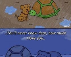 Oh No, The Feels