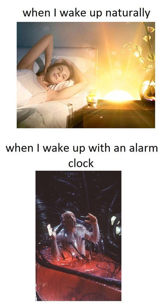 Waking Up Naturally Vs. Alarm Clock