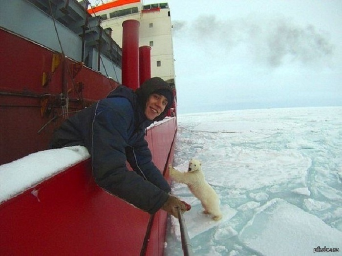 A selfie with a polar bear