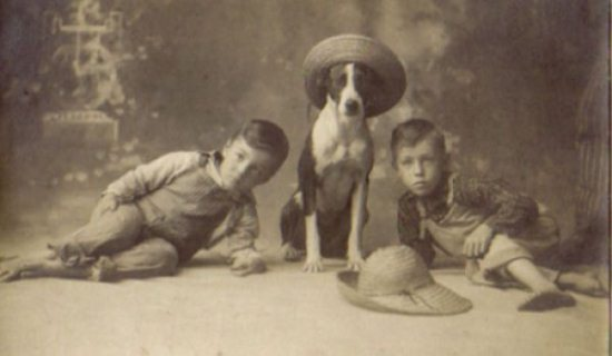 Crazy-Animals-from-Past-14