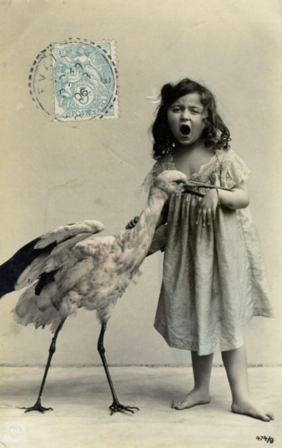 Crazy-Animals-from-Past-19