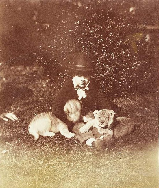Crazy-Animals-from-Past-21