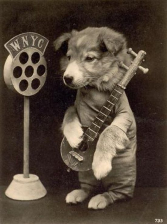 Crazy-Animals-from-Past-5