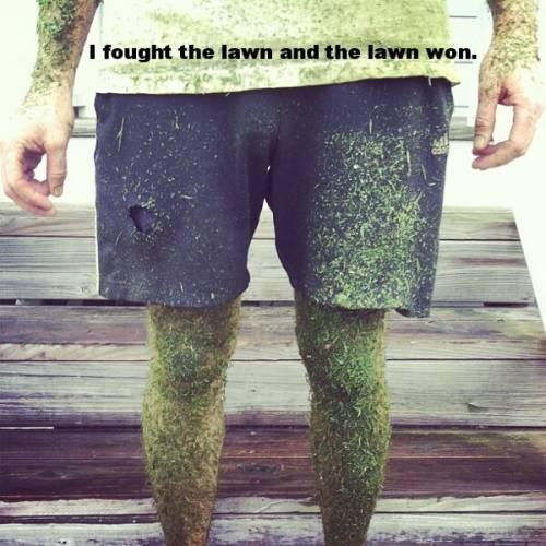 Lawn-won