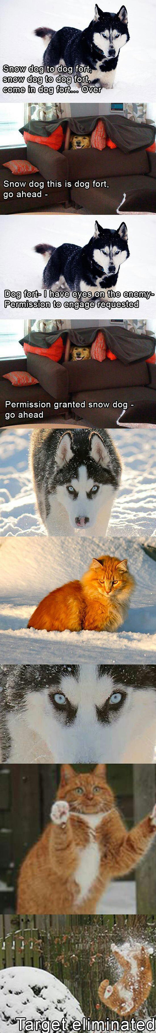 Pet Winter Wars