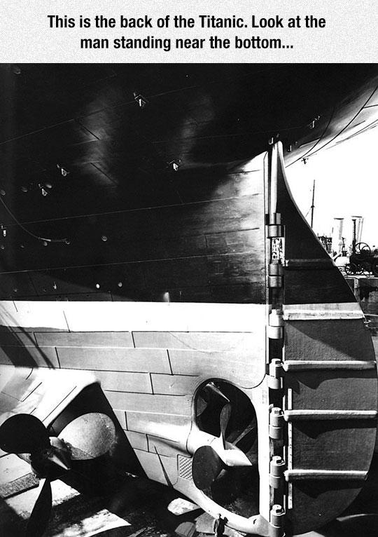 cool-Titanic-human-comparison-engine