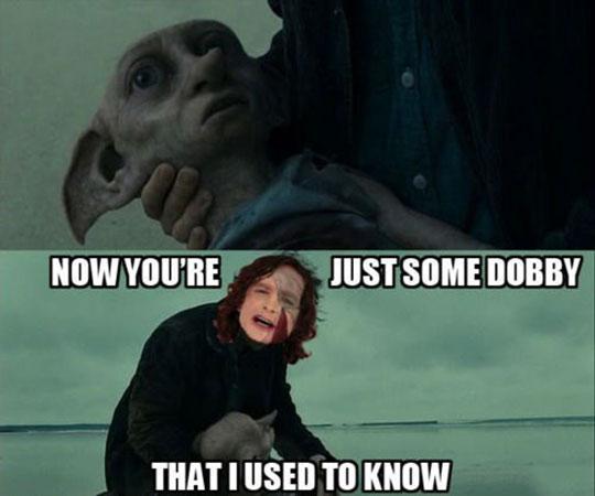 funny-Dobby-song-Gotye