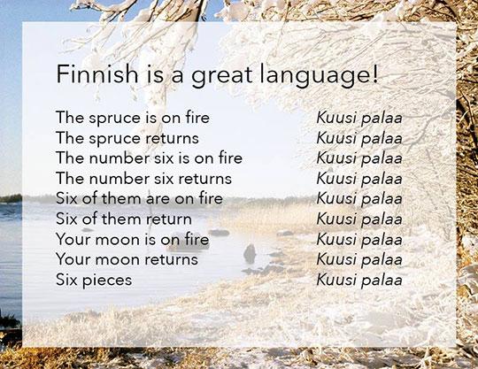 funny-Finnish-language-phrase