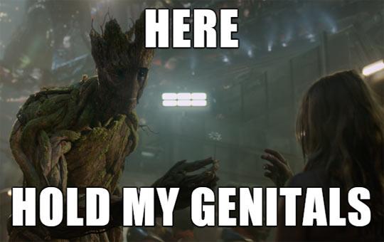Please Behave Groot