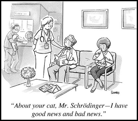 The Schrodinger Conundrum