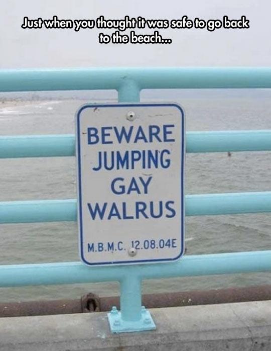 funny-beach-sign-gay-jumping-walrus.jpg