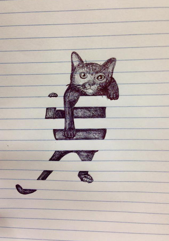 funny-cat-scribbles-drawing-cute