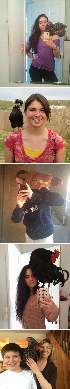 funny-chicken-shoulder-selfie-mirror