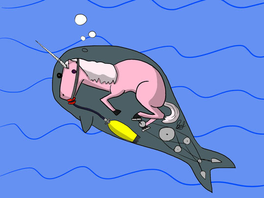 funny-drawing-unicorn-narwhals-sea