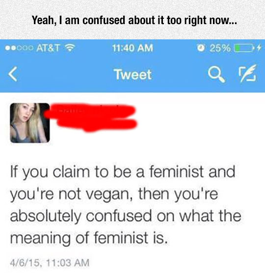 funny-feminist-vegan-meaning-Twitter