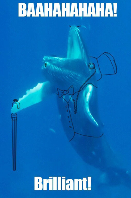 funny-happy-whale-drawing-underwater