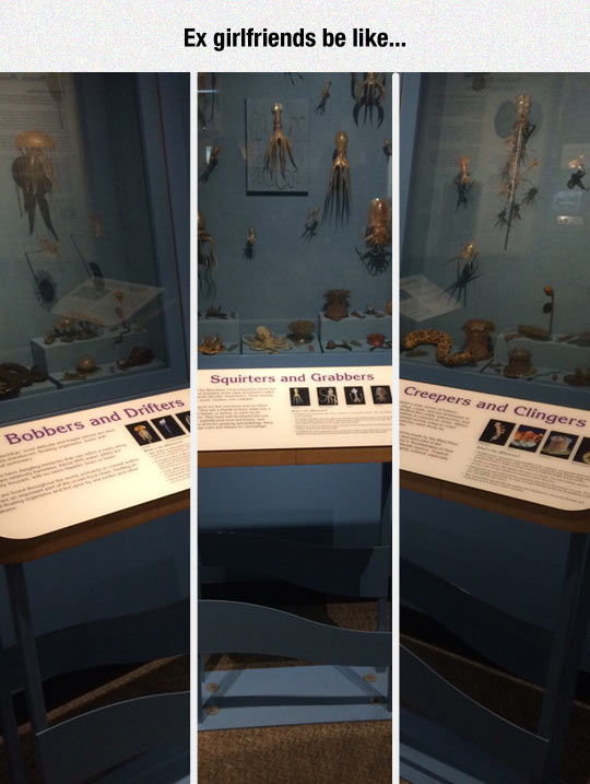 funny-museum-describes-squirters-grabbers