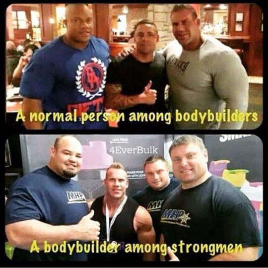 funny-normal-person-bodybuilders-strong-person