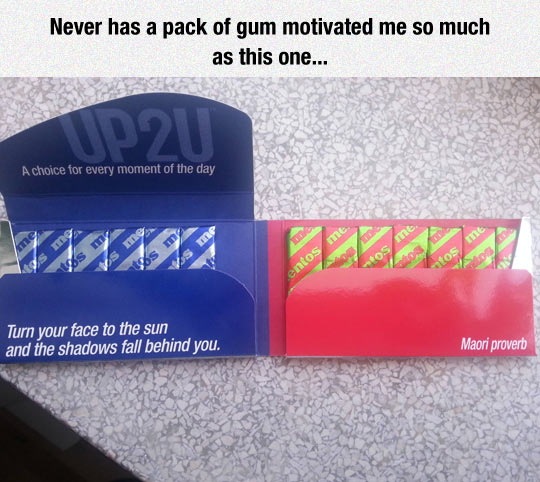 funny-pack-gum-proverb-motivated
