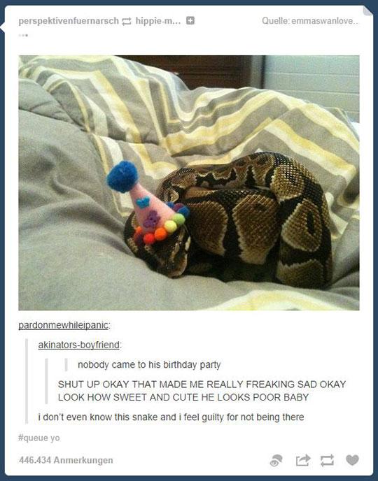funny-sad-snake-birthday-party-alone