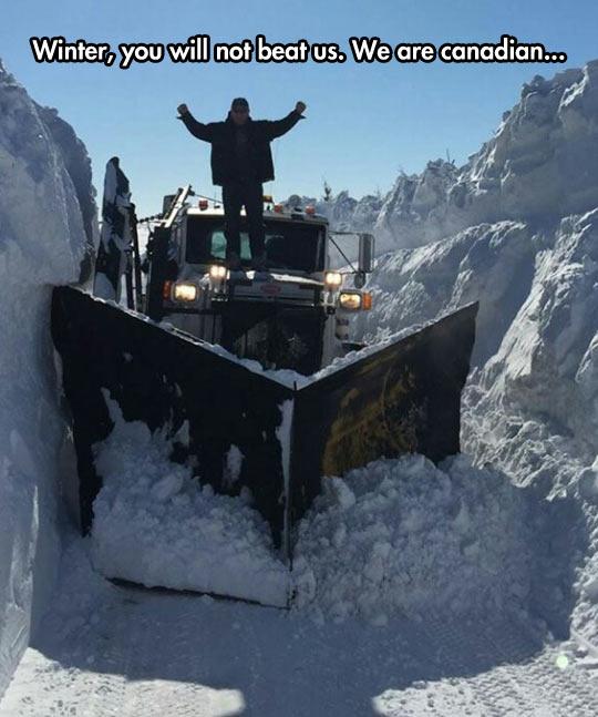 funny-snow-truck-winter-man-Canadian