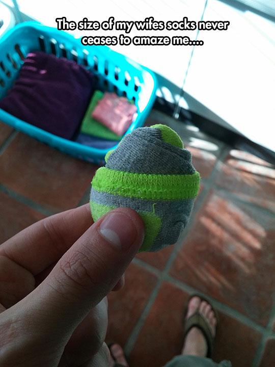 funny-tiny-wife-socks