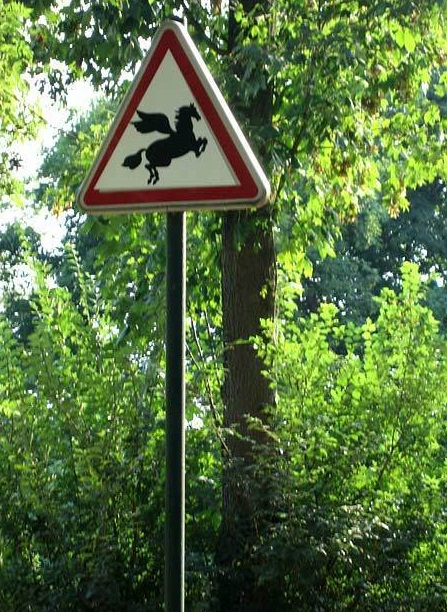 Funny-Signs-Horse-341