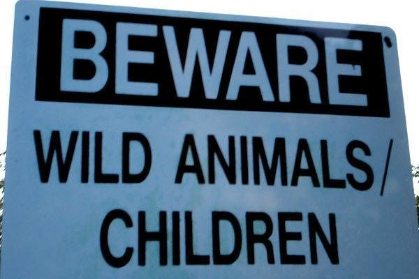 Funny-Signs-Wild-491