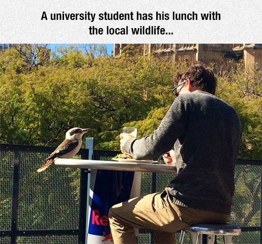 Student Shares A Meal
