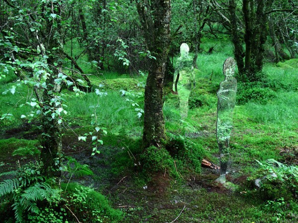 There's Something Lurking In The Woods, But You'll Be Enchanted When You Find It5